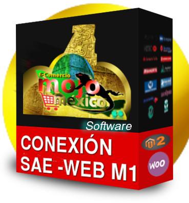 saeweb conexion tienda web