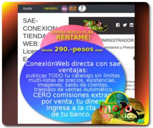 conexion sae web magento