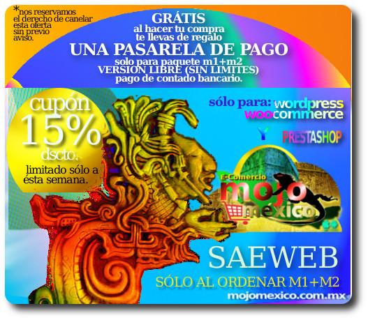 saeweb conexion tienda online
